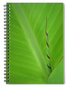Green Leaf With Spiral New Growth Spiral Notebook