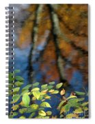 Green Leaves And Autumn Reflection Spiral Notebook