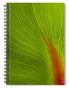 Green Leaves Series 10 Spiral Notebook