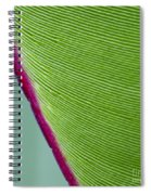 Green Leaves Series  7 Spiral Notebook