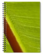 Green Leaves Series  8 Spiral Notebook