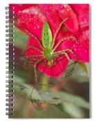 Green Lynx And Pray 8625 3375 Spiral Notebook