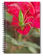 Green Lynx And Pray 8625 3375 Spiral Notebook