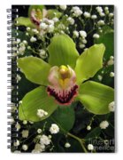 Green Orchid In Baby's Breath Spiral Notebook