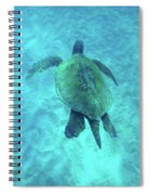 Green Sea Turtle 2 Spiral Notebook