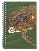 Green Sea Turtle Spiral Notebook