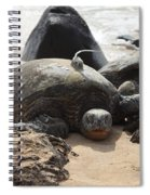 Green Sea Turtle With Gps Spiral Notebook