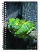 Green Snake Spiral Notebook