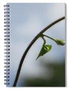 Green Span Spiral Notebook