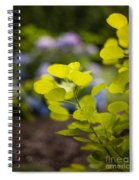 Leaves Illumination Spiral Notebook