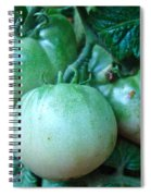 Green Tomatoes On The Vine Spiral Notebook