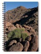 Green Tuft In Sandstone Spiral Notebook