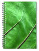 Green Veiny Leaf 2 Spiral Notebook