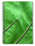 Green Veiny Leaf 2 Spiral Notebook