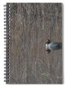 Green-winged Teal Spiral Notebook