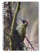 Green Woodpecker Spiral Notebook