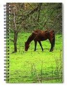 Greener Grass Spiral Notebook