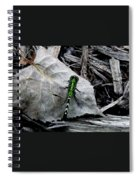 Greenie Spiral Notebook