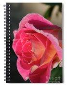 Greet The Sun Spiral Notebook