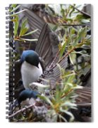 Grey Feathers - Tree Swallow Spiral Notebook