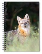 Grey Fox - The Man Spiral Notebook