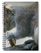 Grey Squirrel Dining Out Spiral Notebook