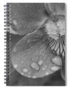 Grey Violet Spiral Notebook
