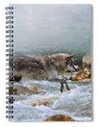 Grey Wolf Jumping Over A Mountain Stream Spiral Notebook