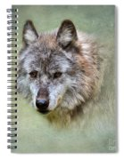 Grey Wolf Portrait Spiral Notebook