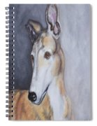 Greyhound In Thought Spiral Notebook