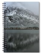 Grinnell Mirror Spiral Notebook