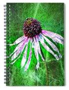 Gritty Coneflower Spiral Notebook