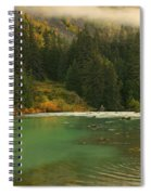 Grizzly Bear Fishing In Chilkoot River Spiral Notebook