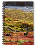 Grizzly Bears And Fall Colours, Denali Spiral Notebook
