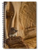 Ground Squirrel At Monument Valley Spiral Notebook