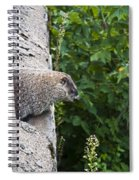 Groundhog Day Spiral Notebook
