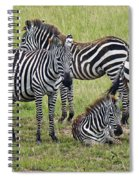 Group Of Barcodes Spiral Notebook