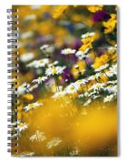 Group Of Daisies Spiral Notebook