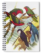 Group Of Lorys Spiral Notebook
