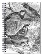 Group Of Sparrows Spiral Notebook