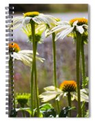 Groupings Spiral Notebook