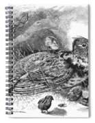 Grouse And Young Spiral Notebook