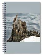 Grumpy Stump Spiral Notebook