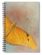 Grunge Julia Dryas Spiral Notebook