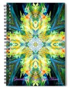 Guardian Angel Of The Home Spiral Notebook