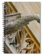 Guardian Dragon Spiral Notebook