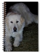 Guarding The Barn Spiral Notebook