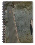 Guaridan Spiral Notebook