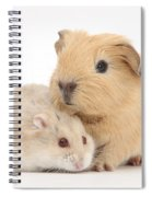 Guinea Pig And Hamster Spiral Notebook
