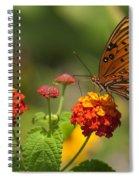 Gulf Fritillary Butterfly On Colorful Lantana  Spiral Notebook